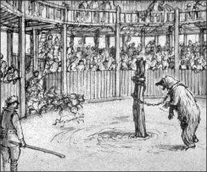 bear-baiting-ring